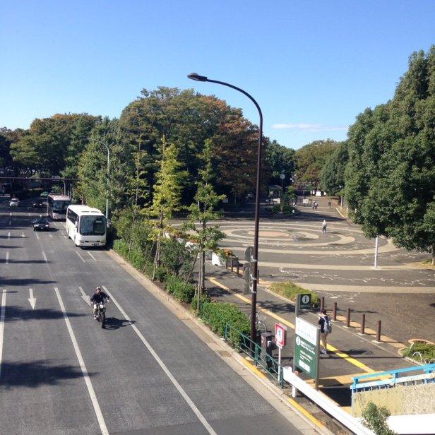 Scenery from a crossing bridge from Harajuku towards Shibuya.